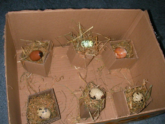 Easter Roosting Box