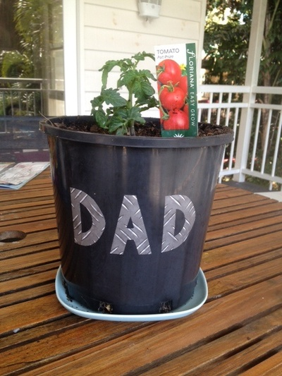 DAD tomato plant, fathers day, fathers day present, homemade fathers day, gift idea for dad, personalised pot plant, vegetable plant kids craft, DAD chilli plant
