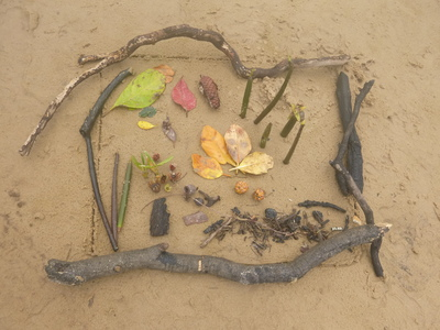 beach art picture kids craft secret garden seed pods
