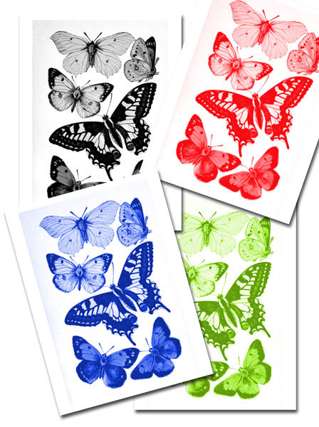 butterfly,collage,decoupage,free printables  - Basic Butterflies