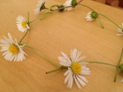 daisy chain, daisy, chain, flower, bracelet, necklace, child, outdoors, craft