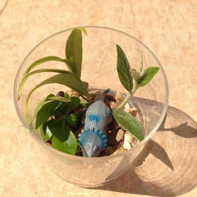 Dinosaur jar, dinosaur garden, dinosaur craft for kids, dinosaur in a glass, plastic dinosaur activity, dinosaur