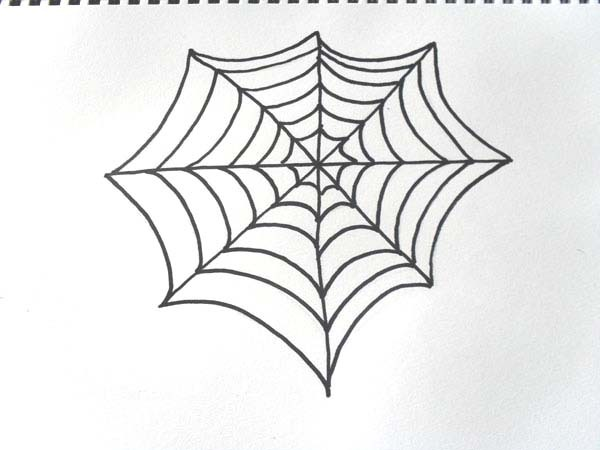 how to draw,spider,cobweb,drawing,halloween - Draw a Spiderweb and ...