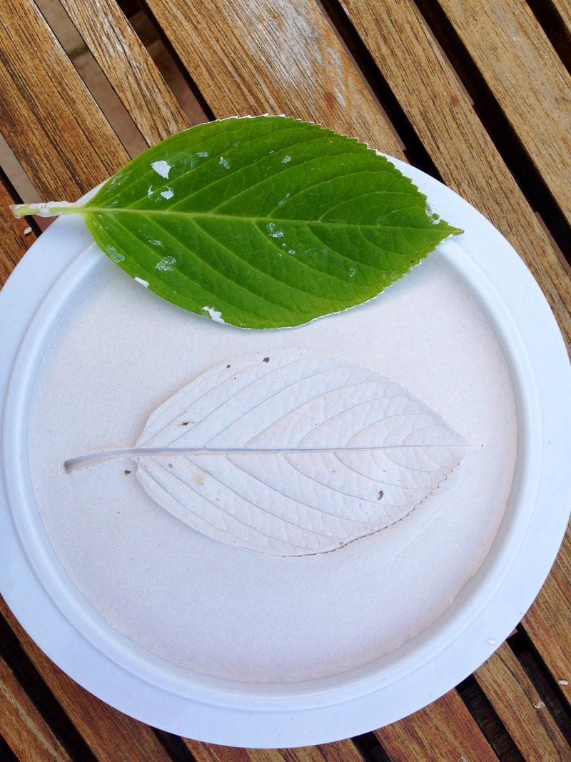 Leaf in plaster lead craft kids craft leaves plaster of for The actor s art and craft
