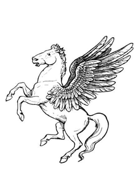 Pegasus Colouring Pages My Kid Craft