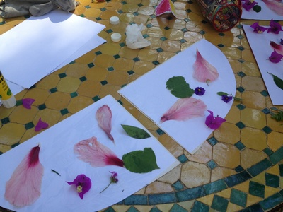 Petal, wings, flight, bird, preschool