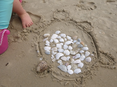 sea turtle shell beach picture kids art