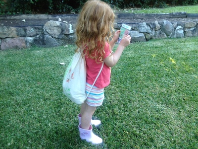 bug hunt explorer, fun outdoor kids activity, insect hunt, kids mini beast hunt, kids explorer, garden explorer kid, how to do a bug hunt in your garden