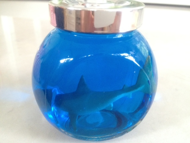 homemade mini aquarium toy shark kid craft