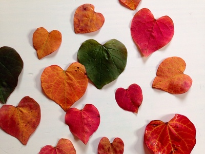 Leaf heart card, leaf card, heart card, leaf craft, autumn craft ideas, kids leaves craft