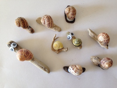 Snail, craft snails, pet snails, snail tutorial, kids craft snails
